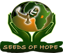 Seeds Of Hope Ltd